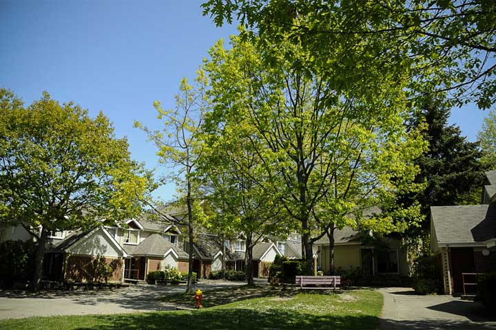 Shaded walkways and townhouses at Acadia Park residence, UBC.