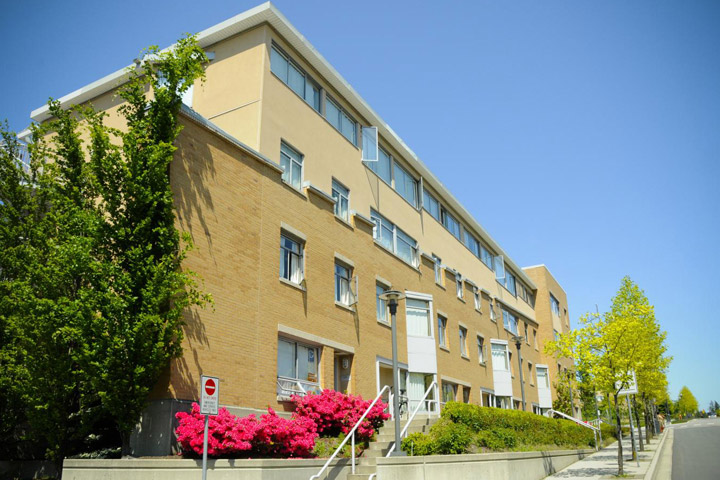 Bright, seasonal flowers grow outside Thunderbird residence, UBC.
