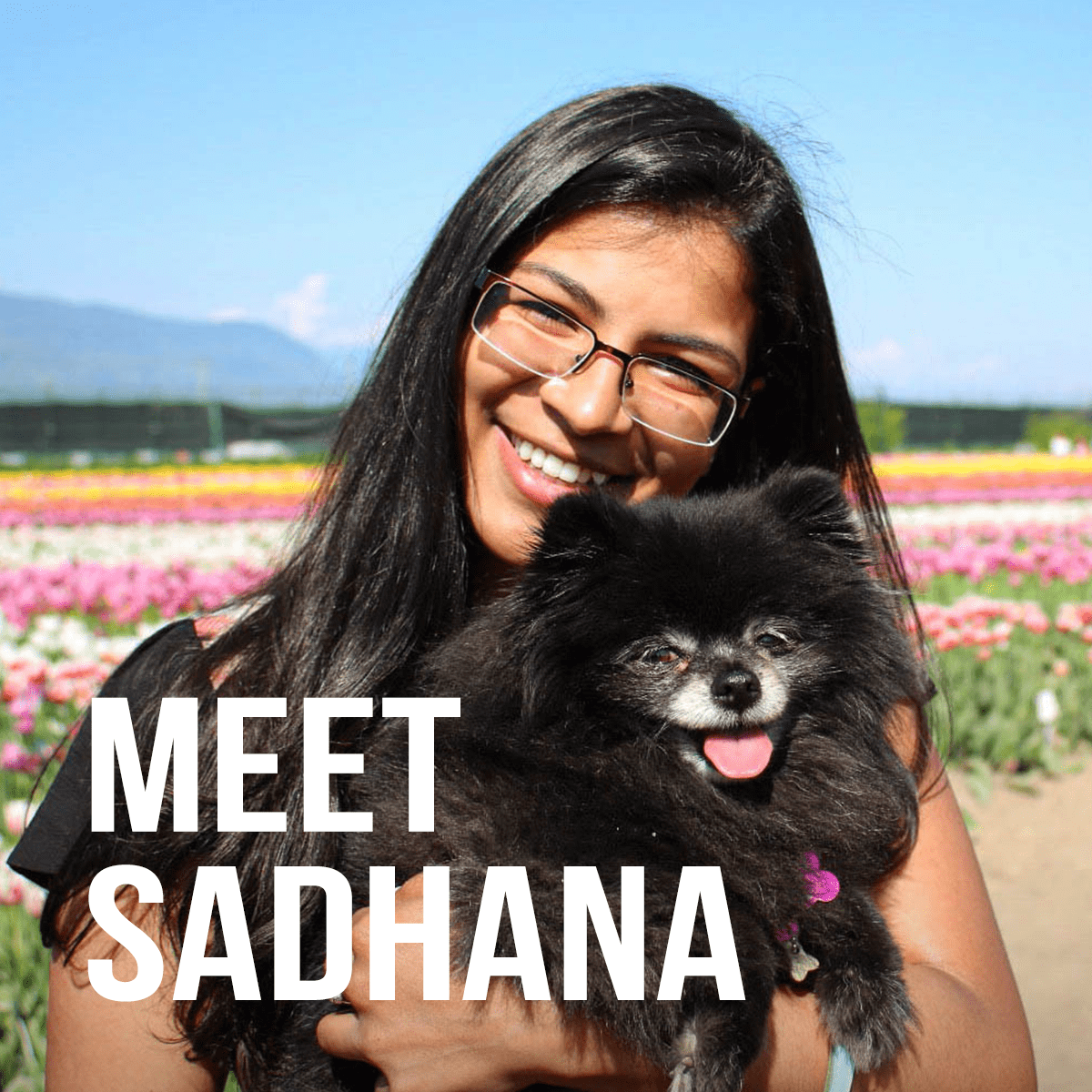 Meet Sadhana
