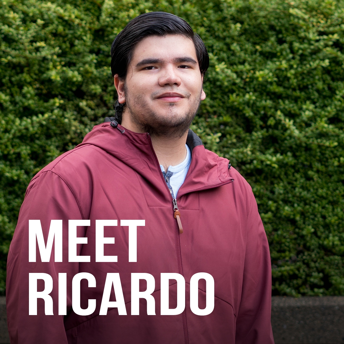 Meet Ricardo